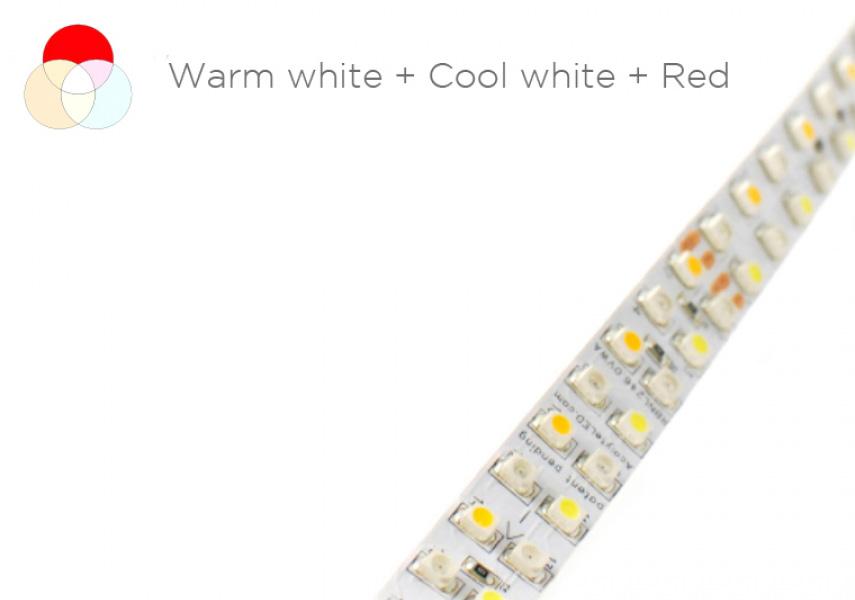 Acolyte LED Ribbonlyte (Variable White Red)