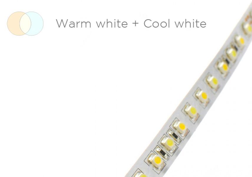 Acolyte LED Ribbonlyte (Variable White)